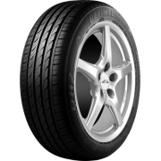 Anvelope Iarna Delinte WD2 225/65 R16C 112/110T